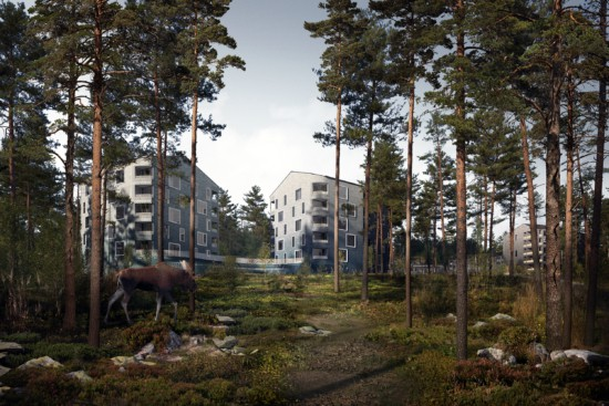 AJAK. Finland, 2019.